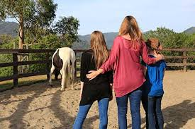 Equine Assisted Psychotherapy for Couples and Families – How EAP changed not only my work, but my family