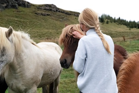How Eating Disorders are Helped by Trauma Focused Equine Assisted Psychotherapy